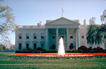 Free Stock Photo: The White House in Washington, DC.