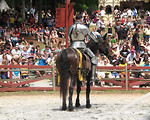 Free Stock Photo: A knight on a horse at the 2011 Georgia Renaissance Festival.