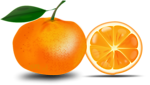 Free Stock Photo: Illustration of an orange slice.