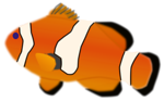 Free Stock Photo: Illustration of a orange fish with a transparent background.