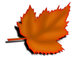 Free Stock Photo: Illustration of an orange autumn leaf with a transparent background.