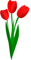 Free Stock Photo: Illustration of red tulips with a transparent background.
