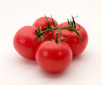 Free Stock Photo: Red tomatoes isolated on a white background.