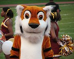 Free Stock Photo: A tiger mascot and cheerleaders at a high school football game.