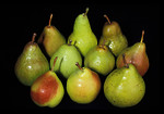 Free Stock Photo: A group of pears isolated on a black background