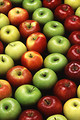 Free Stock Photo: Multiple types of apples lined up in a circular pattern