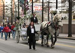 Free Stock Photo: A horse and carriage in the 2010 Atlanta Saint Patrick
