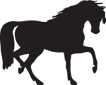 Free Stock Photo: Illustration of a horse silhouette.
