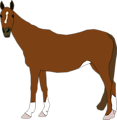 Free Stock Photo: Illustration of a horse