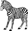 Free Stock Photo: Illustration of a zebra