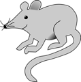 Free Stock Photo: Illustration of a mouse
