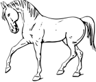 Free Stock Photo: Illustration of a walking horse in black and white