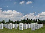 Free Stock Photo: Gravestones in a field at the Georgia National Cemetery