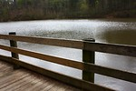 Free Stock Photo: A wooden fence by a lake.