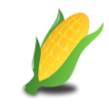 Free Stock Photo: Illustration of an ear of corn on a transparent background.