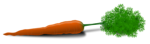 Free Stock Photo: Illustration of a carrot