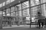 Free Stock Photo: A woman sitting in a library