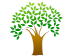 Free Stock Photo: Illustration of a tree with leaves with a transparent background.