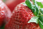 Free Stock Photo: Closeup of strawberries