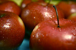 Free Stock Photo: Closeup of red apples