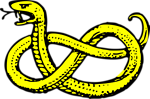 Free Stock Photo: Illustration of a yellow snake