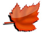 Free Stock Photo: Illustration of a red autumn leaf with a transparent background.