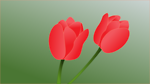 Free Stock Photo: Illustration of pink tulips