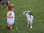 Free Stock Photo: Young girl and a goat in the grass
