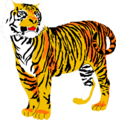 Free Stock Photo: Illustration of a tiger