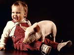 Free Stock Photo: A baby and a pig