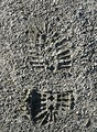 Free Stock Photo: Closeup of a shoe print in sand