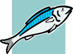 Free Stock Photo: Illustration of a blue fish.
