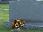 Free Stock Photo: A blank tombstone with some orange flowers.