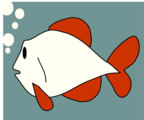 Free Stock Photo: Illustration of a red and white fish