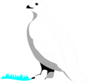 Free Stock Photo: Illustration of a white bird