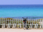Free Stock Photo: A bike parked by the ocean
