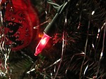 Free Stock Photo: Closeup of a red light on a Christmas tree