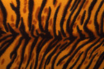 Free Stock Photo: An artificial tiger stripe pattern