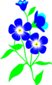 Free Stock Photo: Illustration of blue forget-me-not flowers