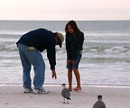 Free Stock Photo: A father and daughter interacting with a seagull on the beach